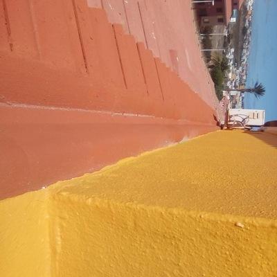 Pintura exterior de vivienda reparación de tejas