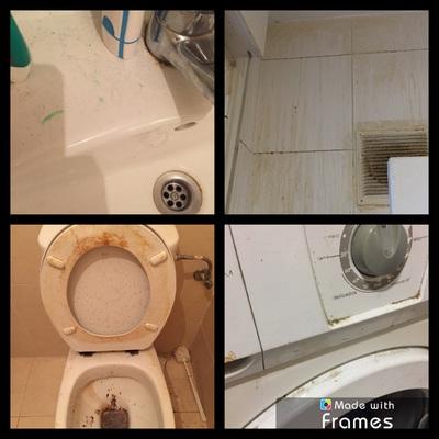 Limpieza general de vivienda
