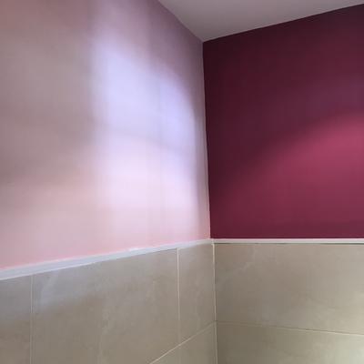 Baño a dos colores