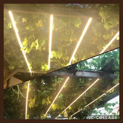 Instalación LED en pérgola