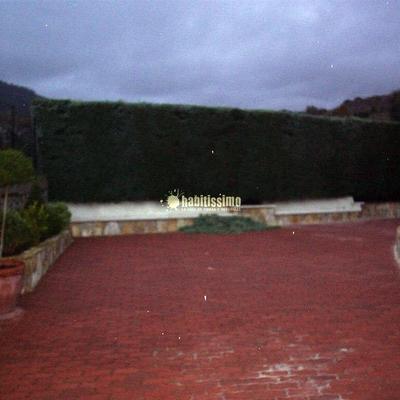 Poda de Arezonicas