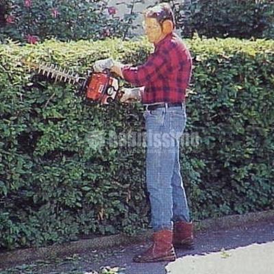 Jardineros, Podas