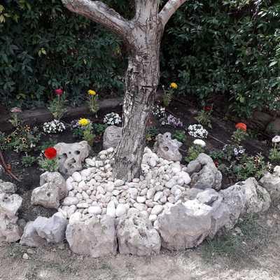 Preparación de jardin