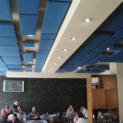 paneles absorbentes techo bar