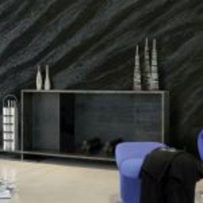 Salón con mural cebrado