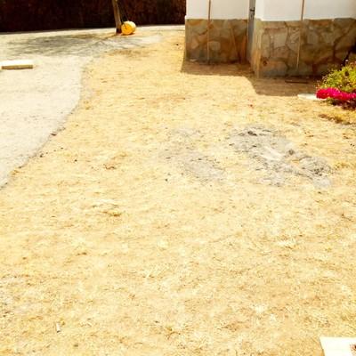 Siembra de cesped y proyecto de un camino de piedra