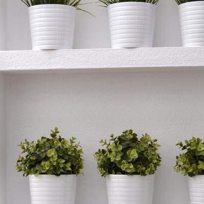Arzúa Arquitectos: Jardín vertical