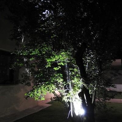 Iluminacion led Jardín