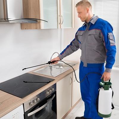 fumigación cocina