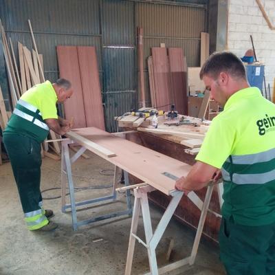 Carpinteros Profesionales