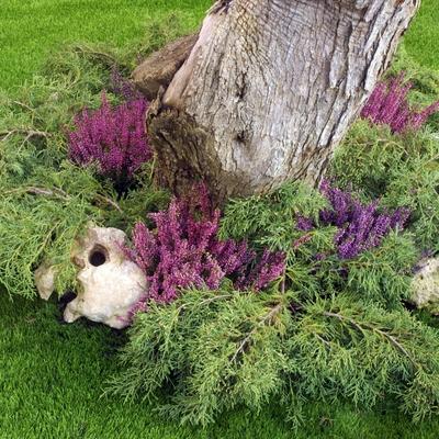 Césped artificial y arbustos naturales