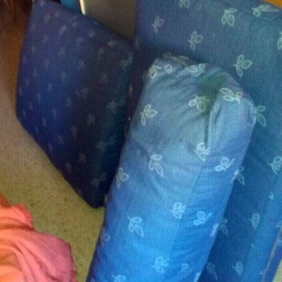 Cojines de sofá clasico.