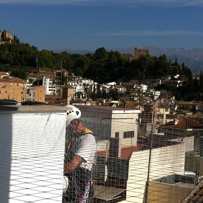 colocación de red anti-palomas en Granada