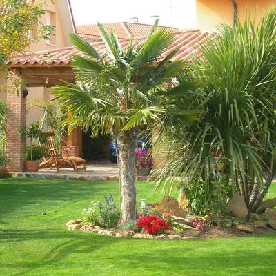 Montaje y mantenimiento de jardines