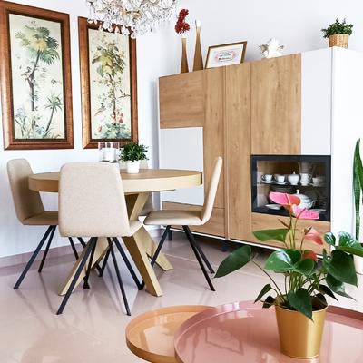 Proyecto decoración salón