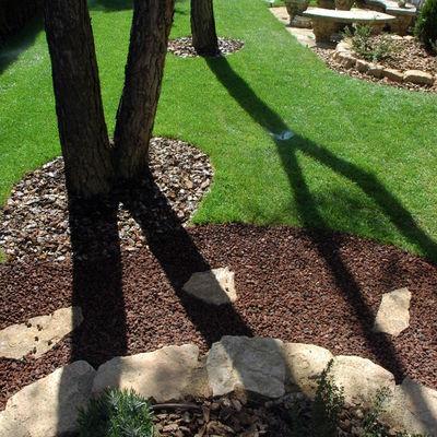 detall de contrastos en un jardí