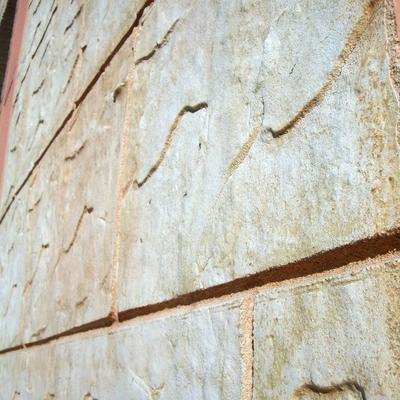Detalle fachada de  impreso en monocapa.
