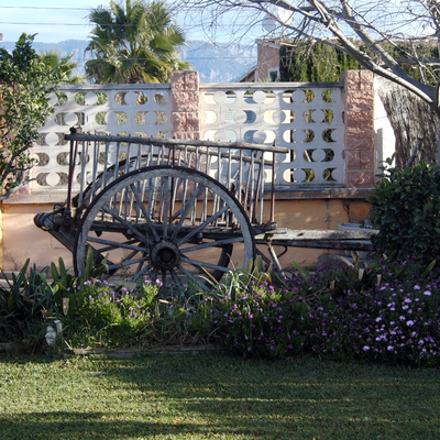 Detalle vista delantera del jardin