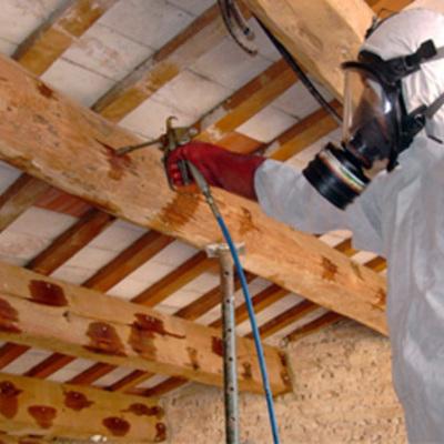 Tratamientos de madera (termitas, carcomas y hongos)