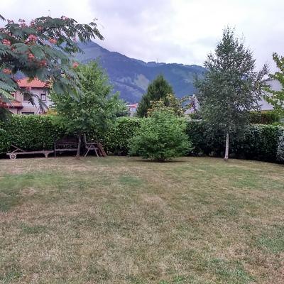 Jardin acondicionado