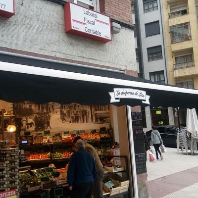 Bambalina Impresa para Frutería en Oviedo