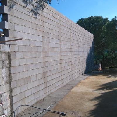 Muro petacas