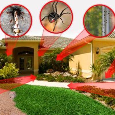 Desinfectación en casas particulares