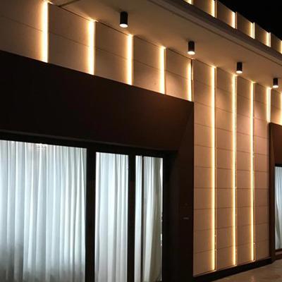 Instalación tiras led fachada Casón de la Vega