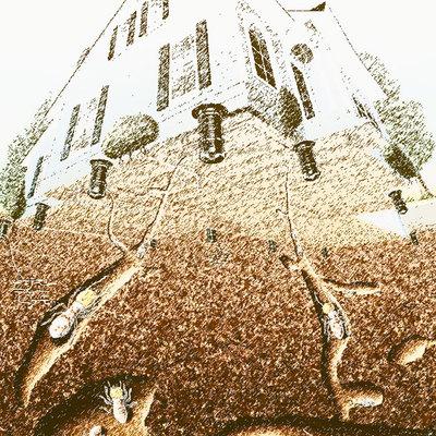 ataque termitas