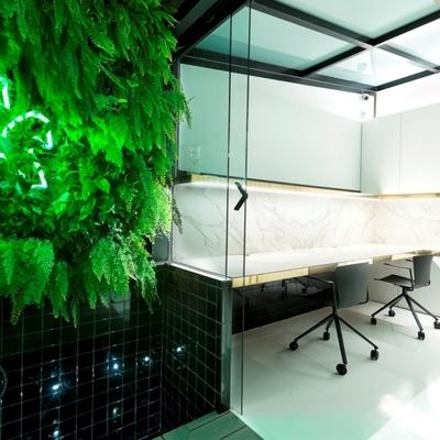 Jardin vertical en espacio de trabajo