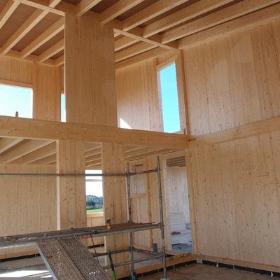 Estructura TimberOnLive interior de vivienda