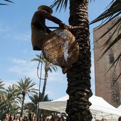 Exhibiciones palmerero tradicional