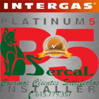 Intergas Platinum Installer P5