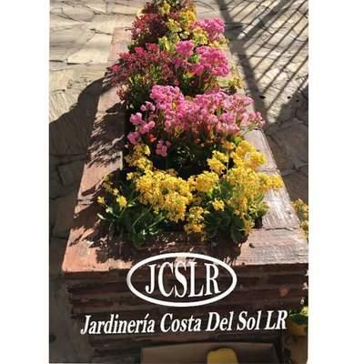Jardinería Costa del SolJardinería Costa del Sol