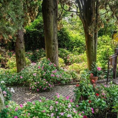 Jardín rustico