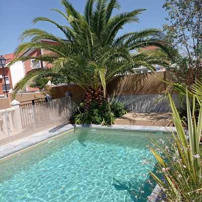 Mantenimiento de piscinas y jardín