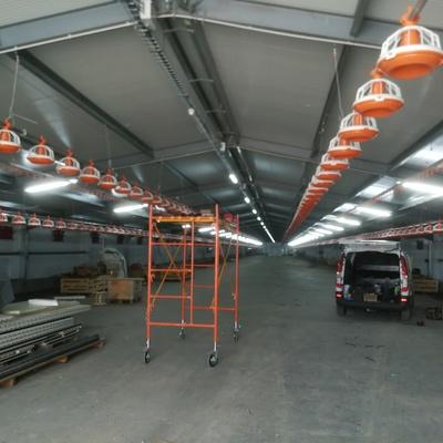 instalación iluminación en granja