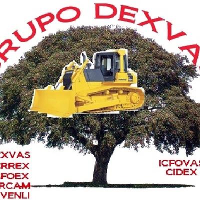 GRUPO DEXVAS