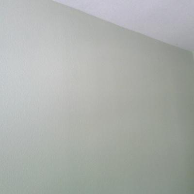 habitacion verde claro