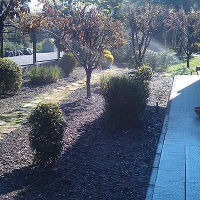 Jardín de Urbanización el Bosque (Villaviciosa de Odón)