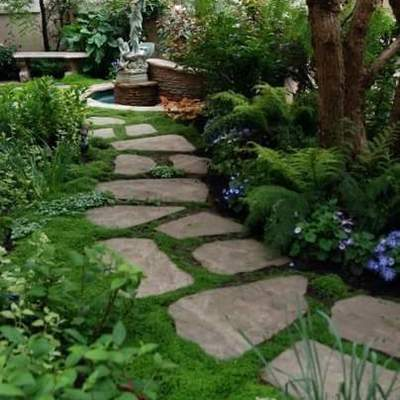 Jardin paisajistico
