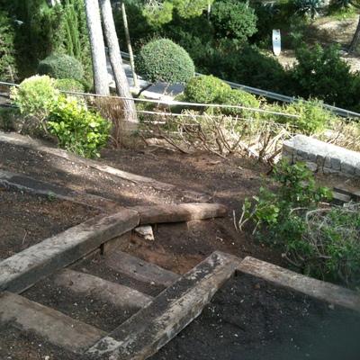 Rediseñando jardin
