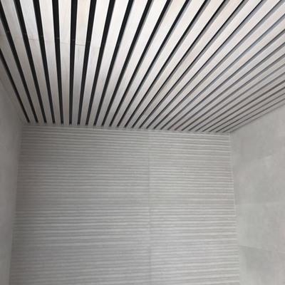 techo de baño