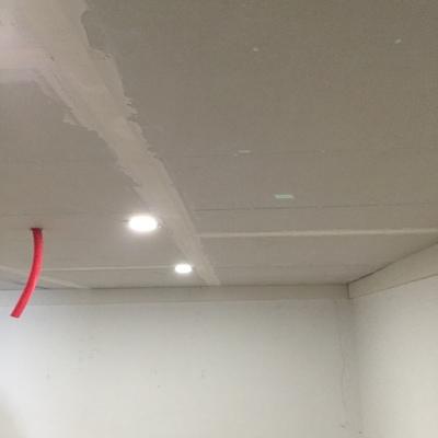 techo pladur en pallaresos