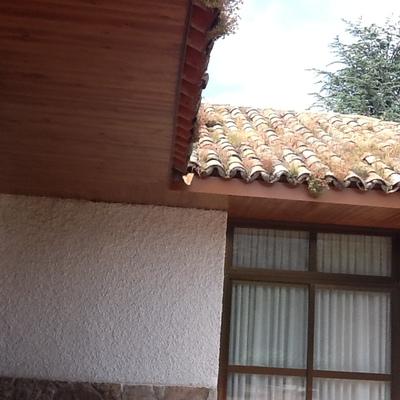 forrar con madera laminada alero de casa