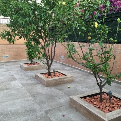 Presupuesto solar jardin online habitissimo for Solar jardin