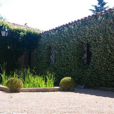 Fresh Garden Jardinería en Torrelodones