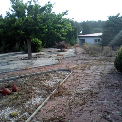 Limpieza de jardin