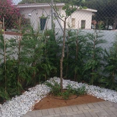 Jardín en punta umbría