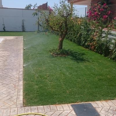 Jardín punta umbría